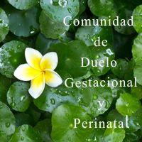comunidad de duelo gestacional y perinatal