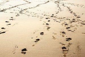Diario de un Viaje El entorno en el proceso de duelo